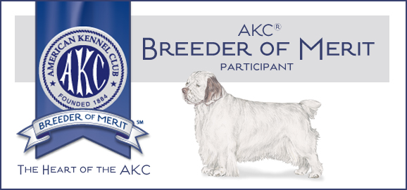 Nexus Clumber Spaniel's James Fankhauser is an AKC Breeder of Merit
